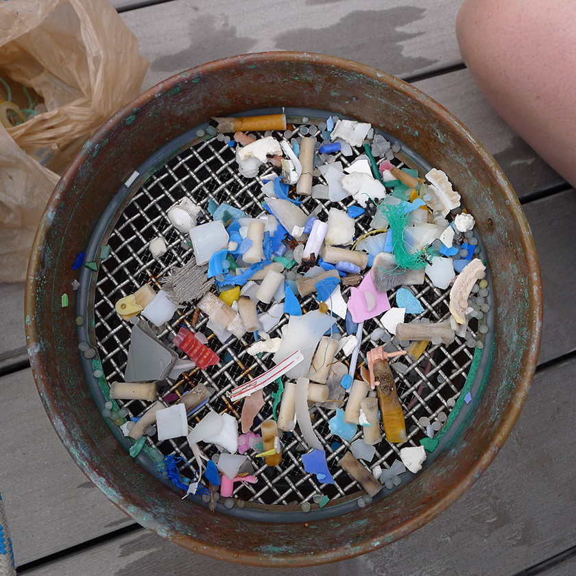 Microplastic Samples