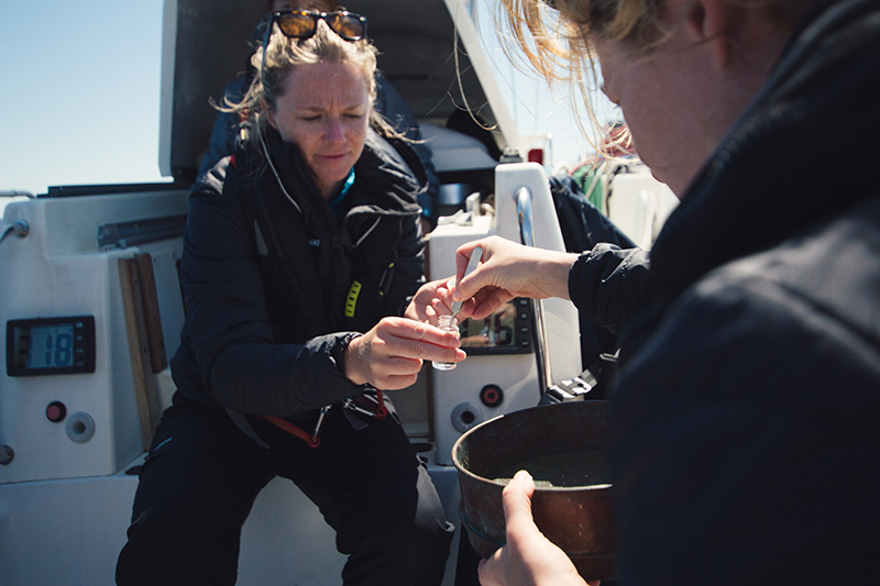Microplastic samples on exxpedition North Pacific